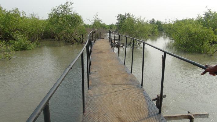 Eisenbrücke Meyingbé-Taayaki, frontal
