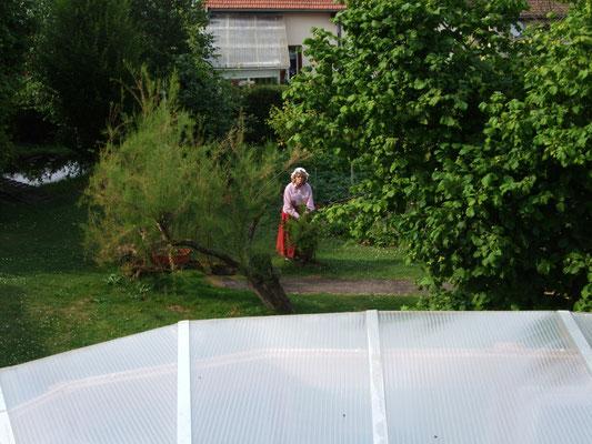 La Lorraine dans le jardin