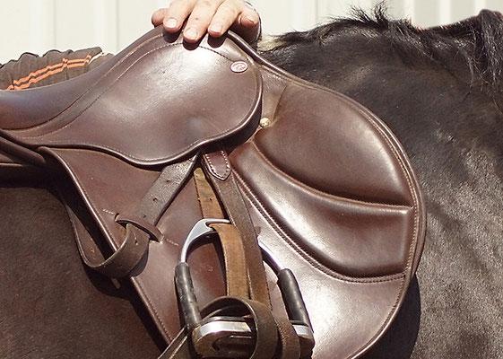 DIPO Sattel Experte Pferde Bewegung Tierarzt Osteotherapie TOS Dr. Grommes