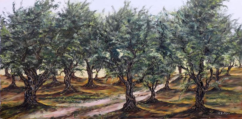 oliveta 100 x 50 olio su tela