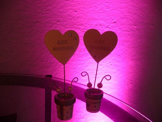 """Beleuchtungs-Paket """"Ambientebeleuchtung"""" mit Bodenstrahlern Uplighting"""
