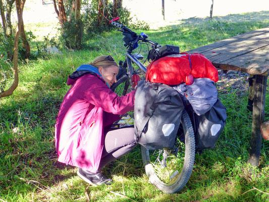 ... and half of our luggage on my bike / ... und die Hälfte unseres Gepäcks auf meinem Fahrrad.