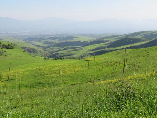 Auf den Hügeln über Duschanbe