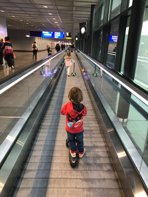 November 2017: Zwei Enkel fliegen viel zu früh wieder weg