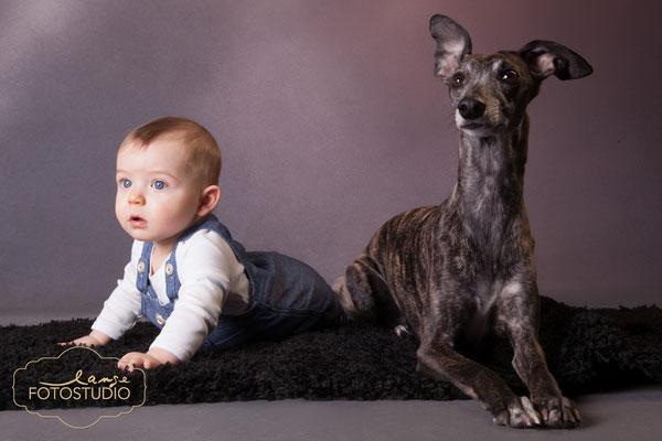 Baby mit Hund ,  Fotohaus Lange , Suhl Thürigen , Tier