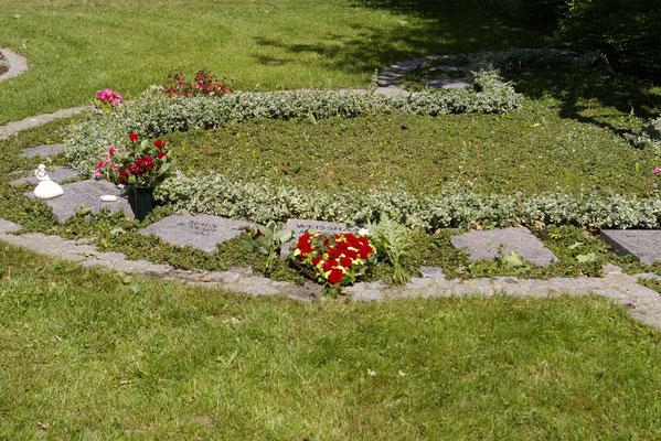 Friedhof am Giersberg, Baumbestattung