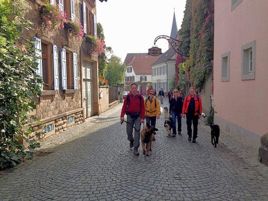 Durch das idyllische Weindorf Forst/Weinstraße