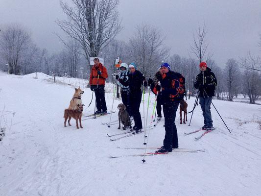 Langlauftour im Böhmerwald Januar 2014