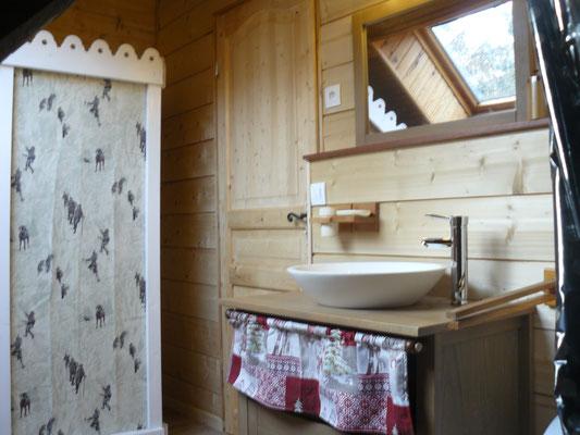 Salle de bain 2 avec douche