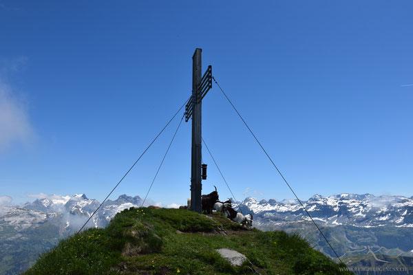 Gipfelkreuz mit Ziegen