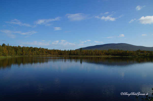 Seen und Wälder...Finnland!