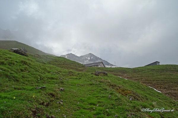 Die Alphütte auf dem Zingel taucht auf...