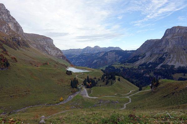Sicht zum Waldisee