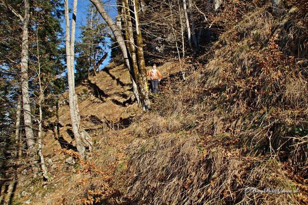 Ein Weiblein steht im Walde...