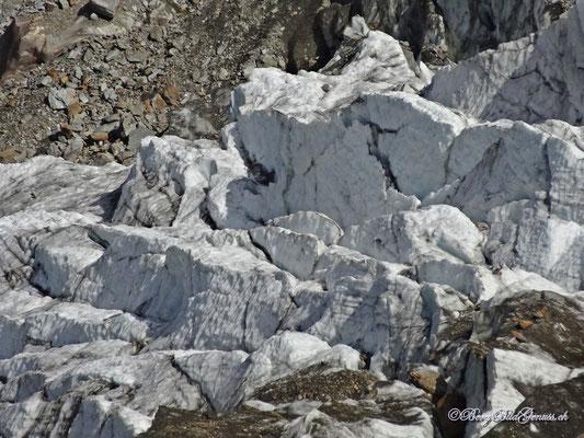 Das schwindende Eis des Riedgletschers