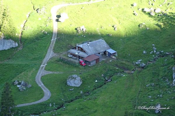 Alp Fräkmünt