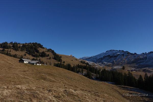 Blick zurück zur Alp Nielenstock