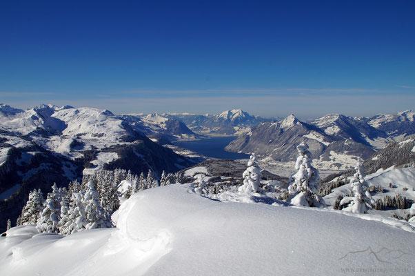 Fjordland Zentralschweiz