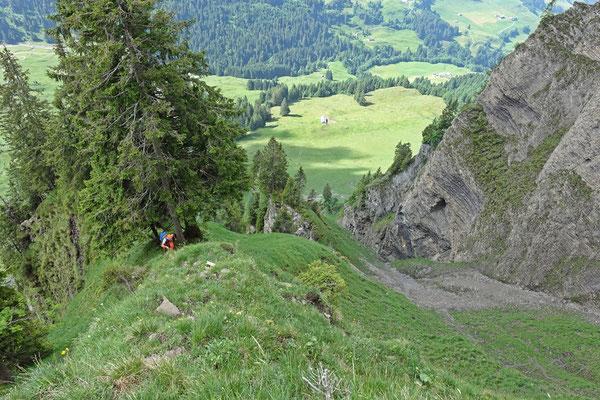Sicht zum Routenbuchbaum...und Otmar.