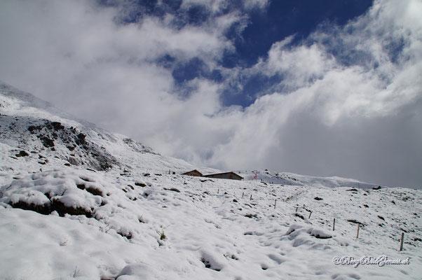 Bald bei der Alp Maranguns