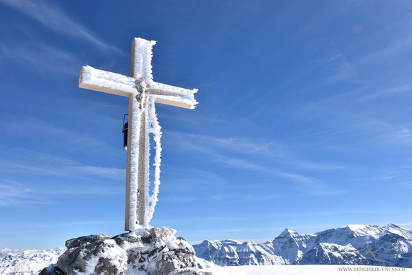Das neue Kreuz