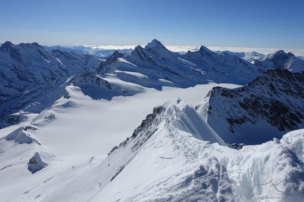 Gipfelgrat am Mönch, im Hintergrund der höchste Berner, das Finsteraarhorn