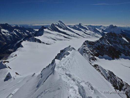 Die wohl bekannteste Gipfelaussicht am Mönch