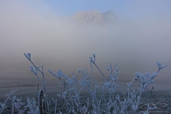Langsam lichtet sich der Nebel..