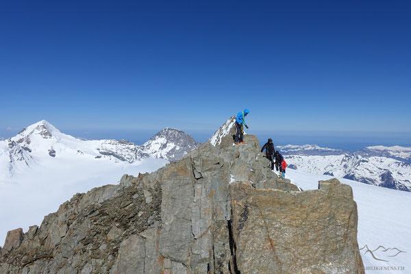 Am Gipfel des Hinteren Fiescherhorns