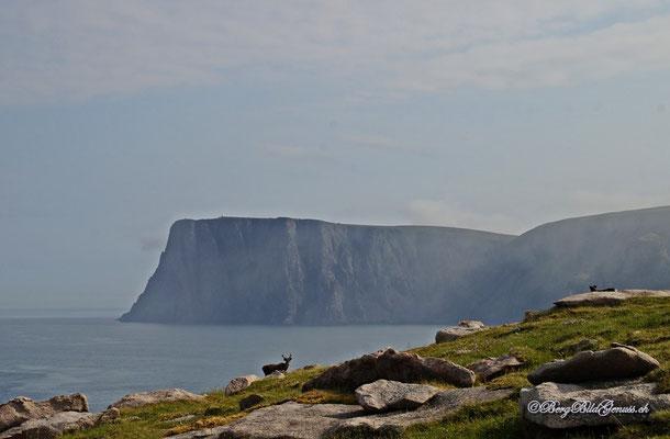 Unterwegs auf den Geländerücken - Sicht rüber zum Nordkapp