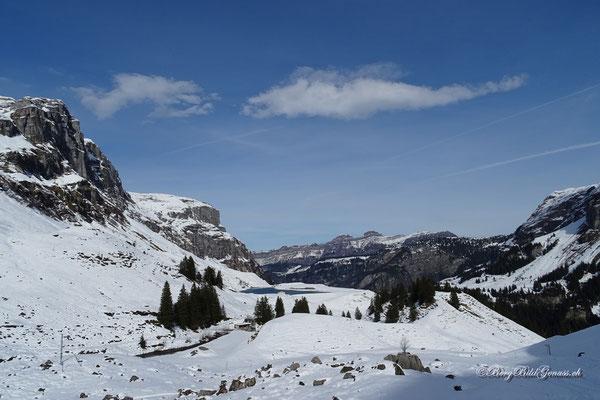 Waldisee, dahinter Forst- und Druesberg