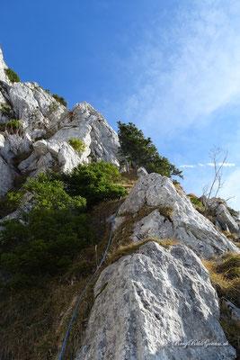 Bald beim Routenbuch am Felsen bei der Föhrengruppe
