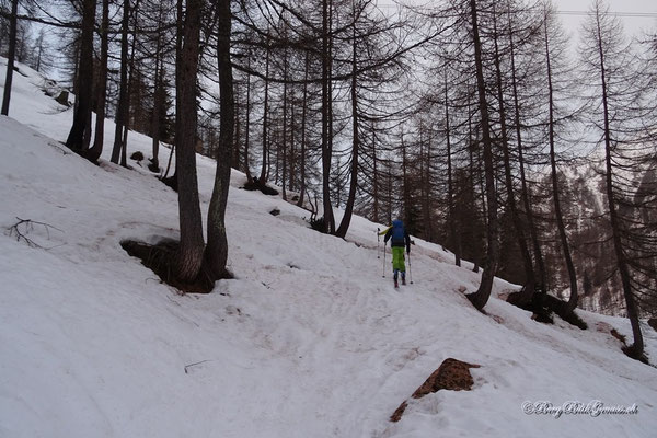 Aufstieg durch den steilen Wald - heute hart gefroren