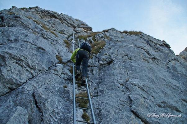 Auf der langen Leiter
