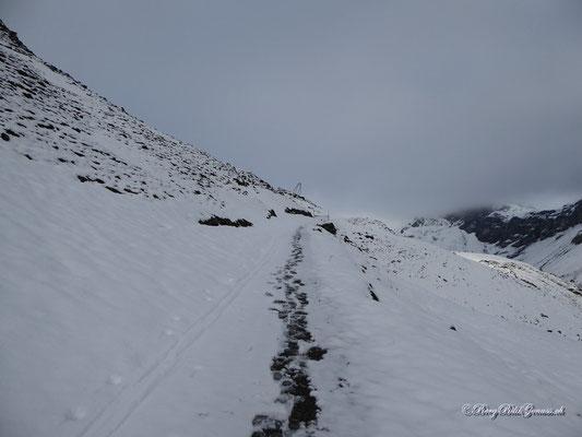 Etwas oberhalb der Ruosalper Hütte...bald beim Gatter