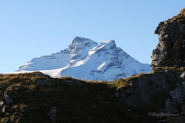 Schärhorn