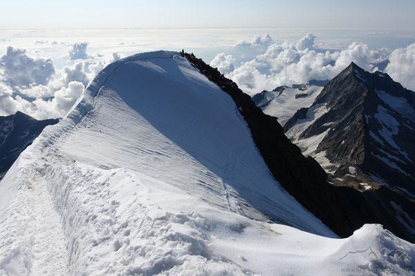 Der hübsche Firngrat zum Gipfel