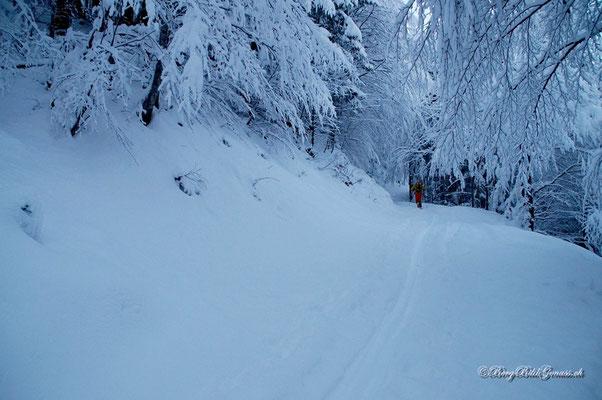 Ab ins Winterwunderland