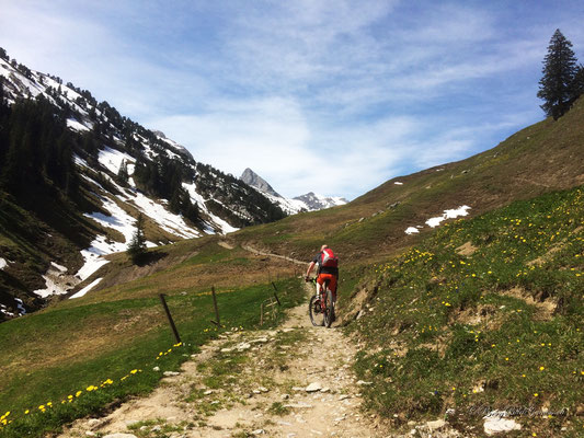 Schöner Trail - leider fegt uns der Wind fast von den Rädern..