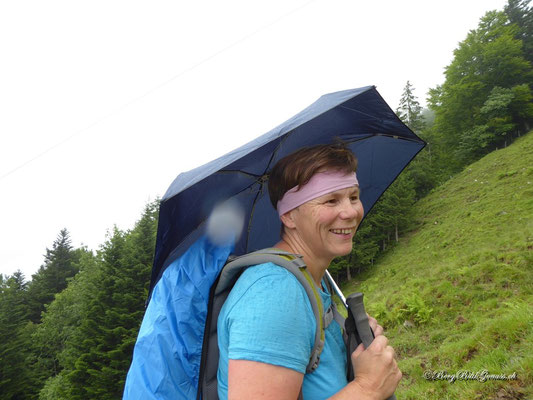 Schirmwanderer II