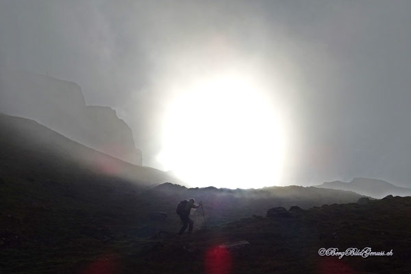 Gestalt im Nebel