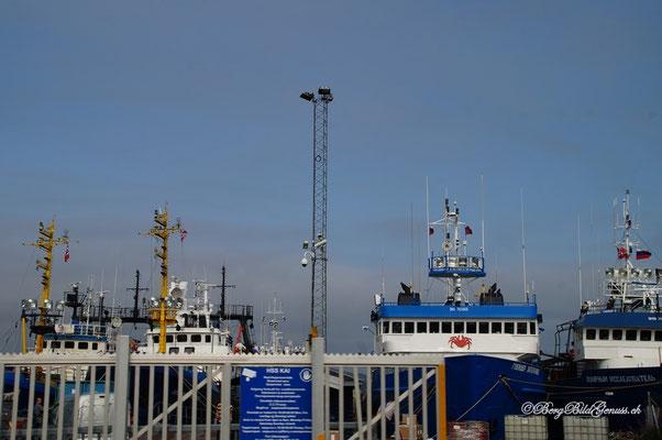 Krabbenfangflotte
