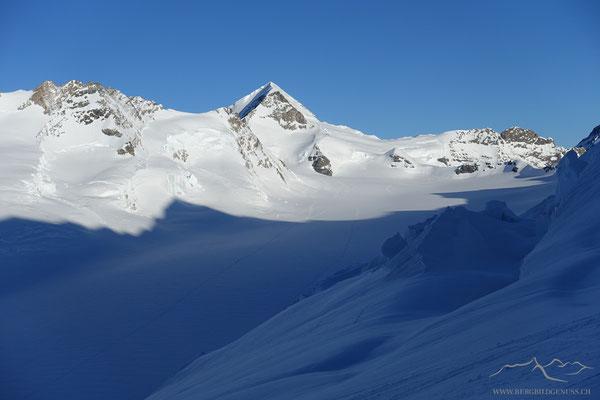 Sicht übers ewig Schneefeld zum Mönch