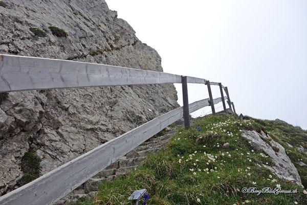 Auch Treppen gibt es hier