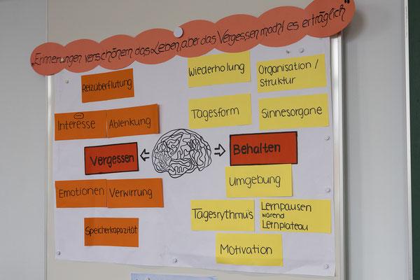 Ausbildung im Fach Pädagogik - Pädagogische Psychologie am SAF Kirchheim - 14