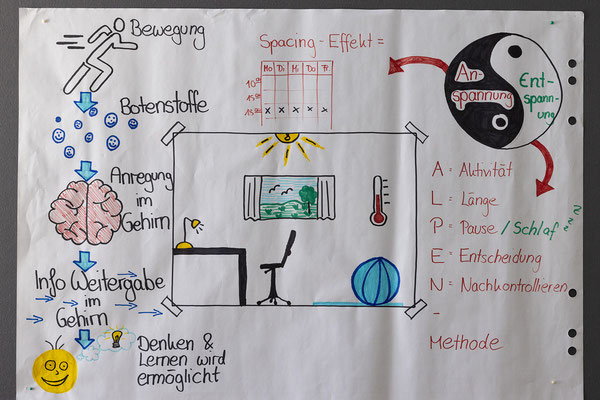 Ausbildung im Fach Pädagogik - Pädagogische Psychologie am SAF Kirchheim - 8