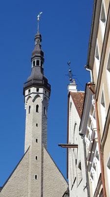 Ansichten aus der Altstadt Tallinns. Foto: Ulrichs
