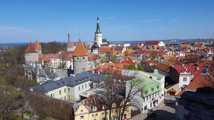 Blick von der Oberstadt auf Stadt und Hafen, wo im Sommer gleich mehrere Kreuzfahrtschiffe am Tag anlegen. Foto: Ulrichs