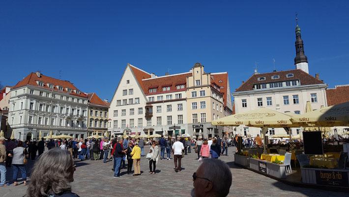 Der Rathausplatz der estnischen Haupstadt ist Treffpunkt für zahlreiche ausländische Besuchergruppen. Foto: Ulrichs