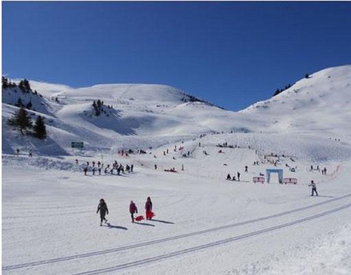ski de fond à Nistos, belle étendue riante!